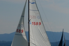 NI7_9956